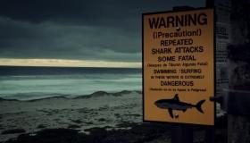 Özel Yapım: Seri Katil Beyaz Köpekbalığının Dönüşü