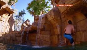 Vegas'ta tropik cennet