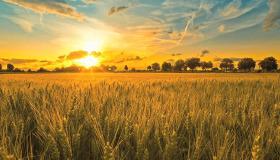 Kırsal bölgede yaşamanın avantajları ve dezavantajları