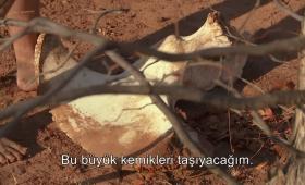Bülent'in kemik tahtı