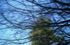 ALASKA DEMİRYOLU - 2. Sezon 5. Bölüm