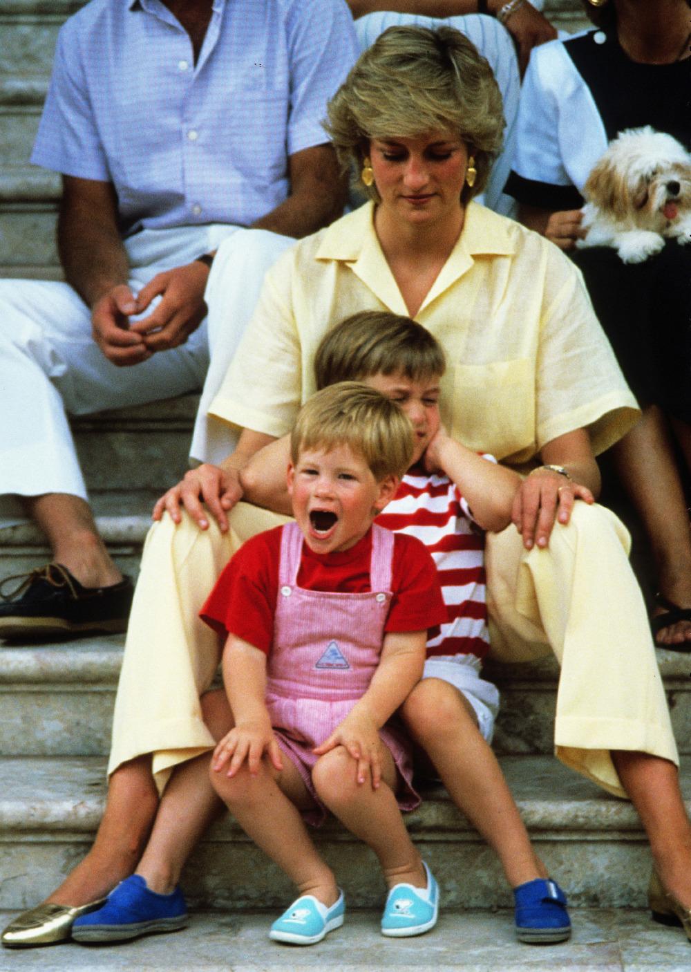 Prens William Prens Harry