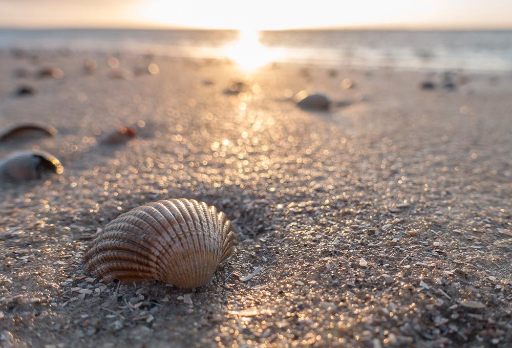 Sadece Sahil Kenarında Yaşayanların Anlayabileceği 15 Şey